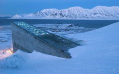 The Svalbard Global Seed Vault was built to preserve the unmodified food staples of the World